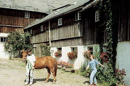 Bauernhof-Urlaub