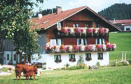 berghof berger bio de dein webportal f r biourlaub zwischen ostsee und alpen. Black Bedroom Furniture Sets. Home Design Ideas