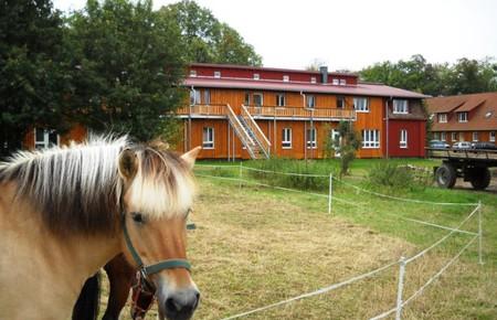 Hof Medewege - Ferienwohnungen und Zimmer im alten Pferdestall
