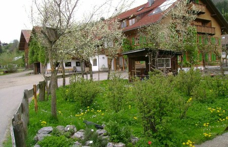 Ferienhof Schm�lz